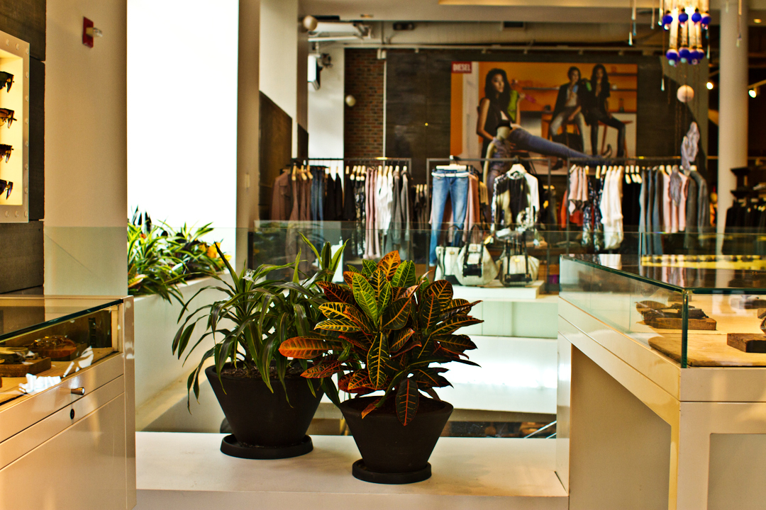 Vibrant plants for retail store