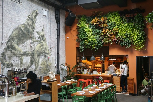 Hanging wall garden in restaurant