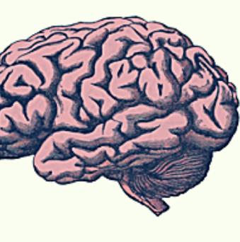 ¡Ni un minuto más! Emergencias cerebrovasculares