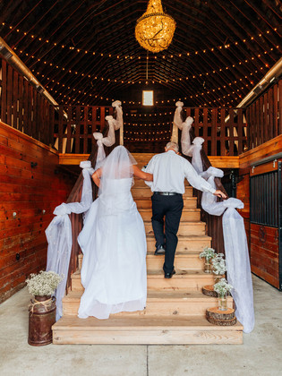 Pauley_Wedding-203.jpg