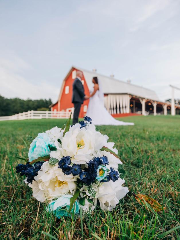 Pauley_Wedding-349.jpg