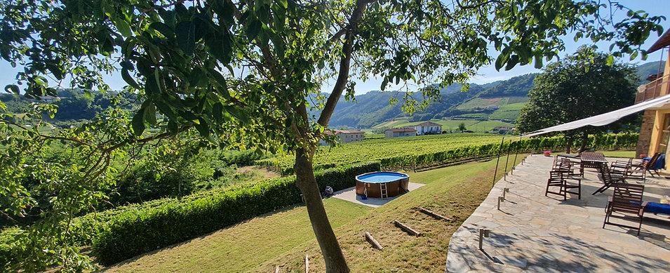 Villa al Plin zwembad met terras 2020 br
