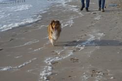 Ayla aan de zee