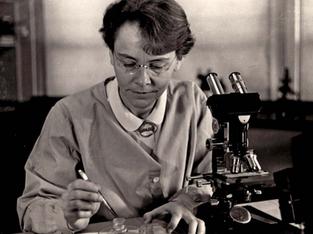 Series: Women who changed the world - Barbara McClintock