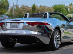 Wrapped Jaguar