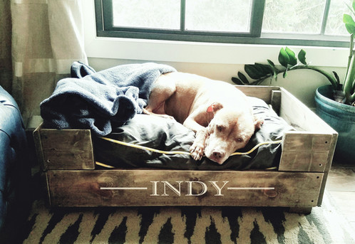 let your favorite furry friend enjoy creature comforts when you diy this beautiful wooden dog bed the bed is available in 3 sizes call for custom size - Raised Dog Beds