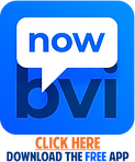 BVI_now_WEBSITE ICON 3.png