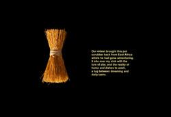 2_African Brush_final_sharpened_13x19PG