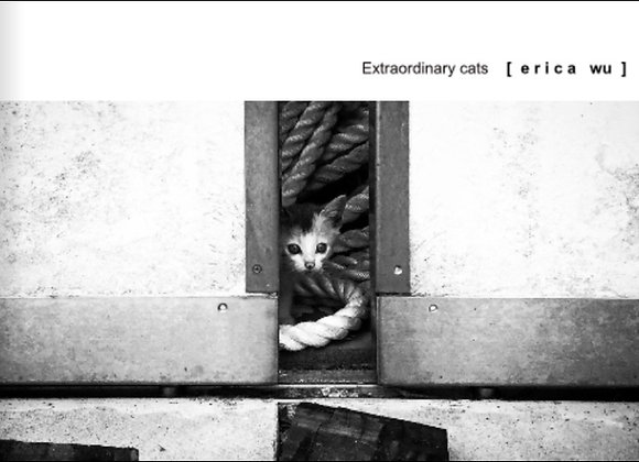貓咪攝影集-黑白