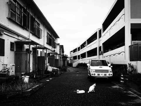 日本  |  福岡縣  |  玄界島