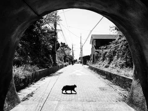 日本  |  福岡縣  |  藍島