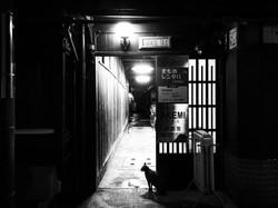 日本 京都府 祇園
