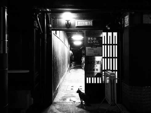 日本  |  京都府  |  祗園
