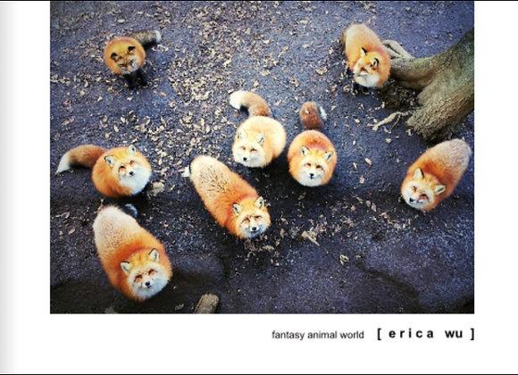 貓咪&動物攝影集-狐狸封面