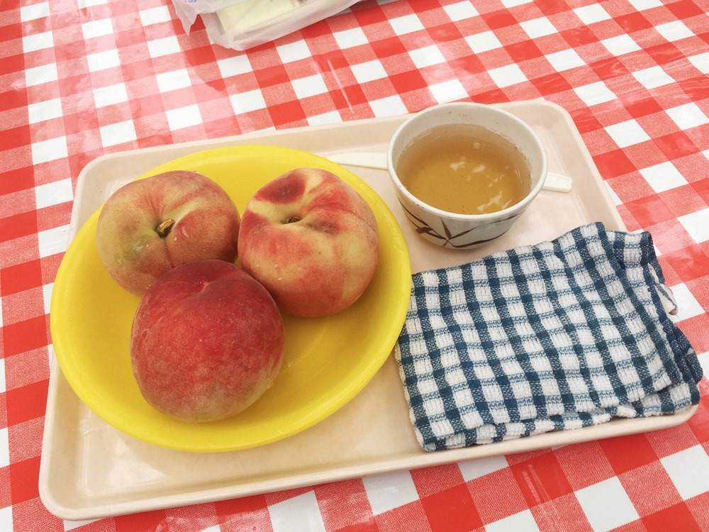fuefuki, yamanashi, tourism, visit, travel, peach, grape, hot spring, japan, inbound, peach city, international student, report, blog