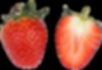 おいCベリー, イチゴ, いちご狩り