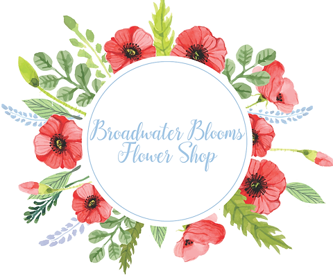 broadwater_cloom_flower_shop31circle+(5).png