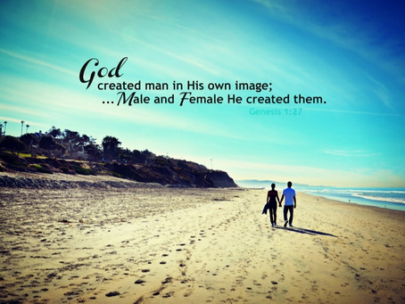 'Male and Female He Created Them' A Recent Document from the Sacred Congregation from Education