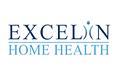 Excelin website.png