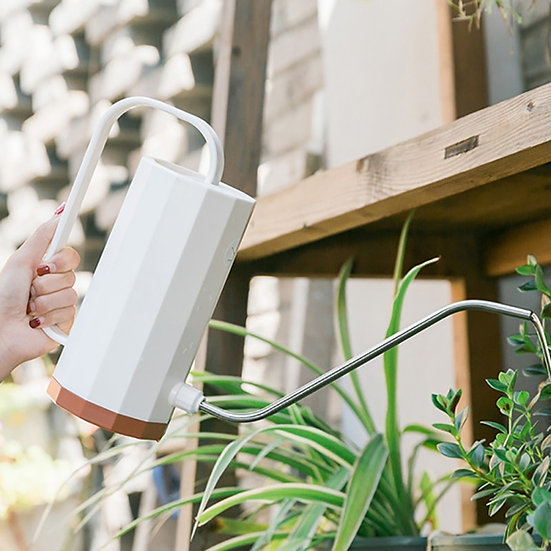 Aesthetic Watering Can