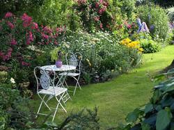 Ann's Garden