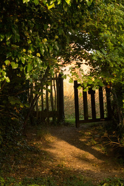 Wighton Church Gate