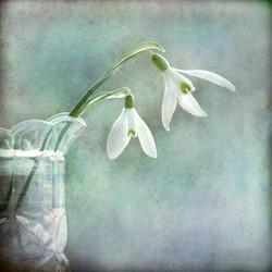 Winter Souvenir