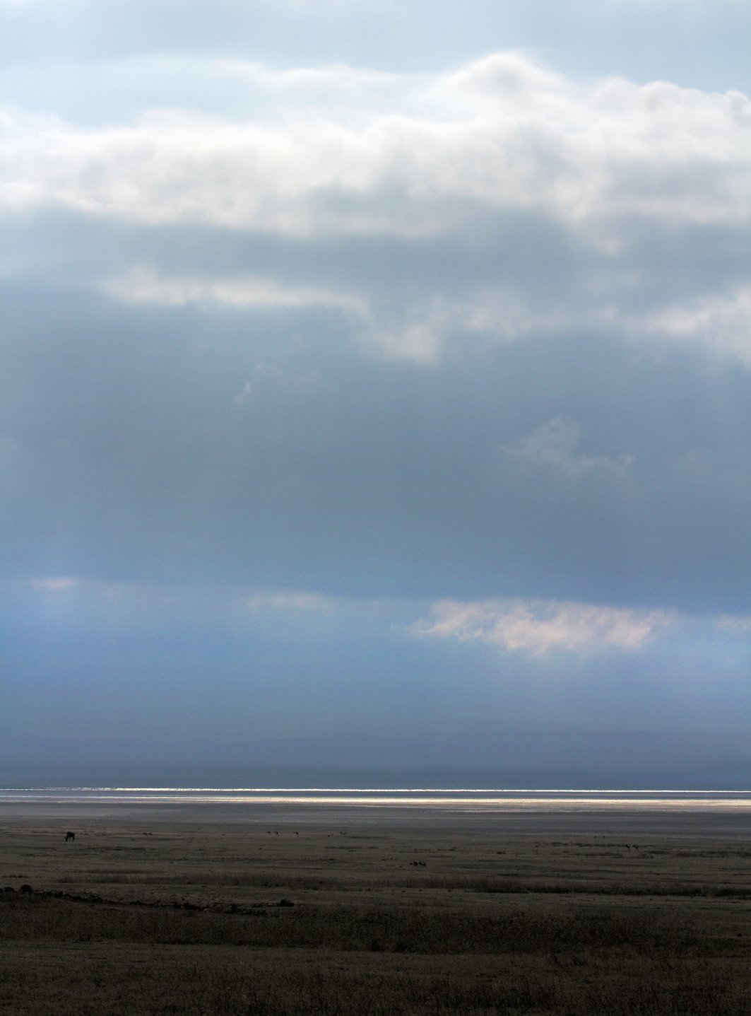 Silver Water, Ngorongoro Crater NP