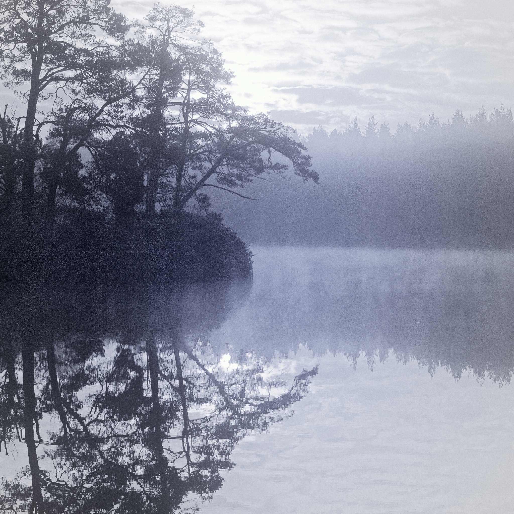 Henley Park Lake, Surrey