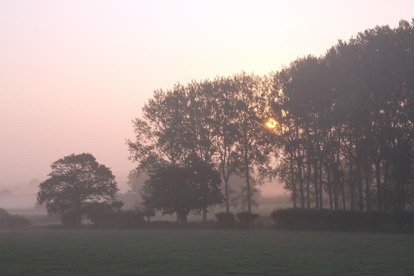 Wighton Sunrise