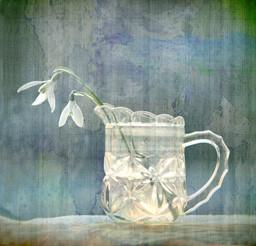 Snowdrops in a Pressed Glass Jug