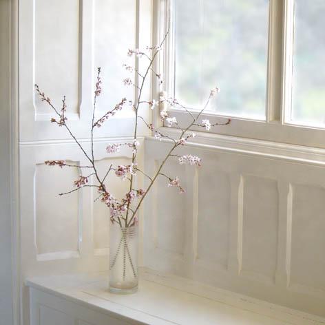 Albury Window