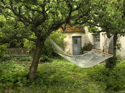 Between Apple Trees