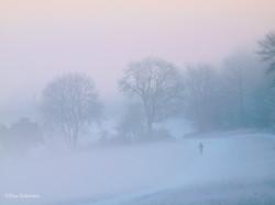 Winter on the Surrey Hills