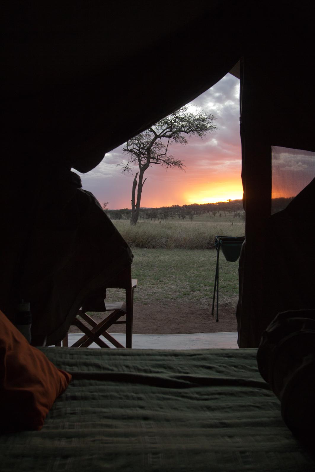 Serengeti Sunset, Bush Camp