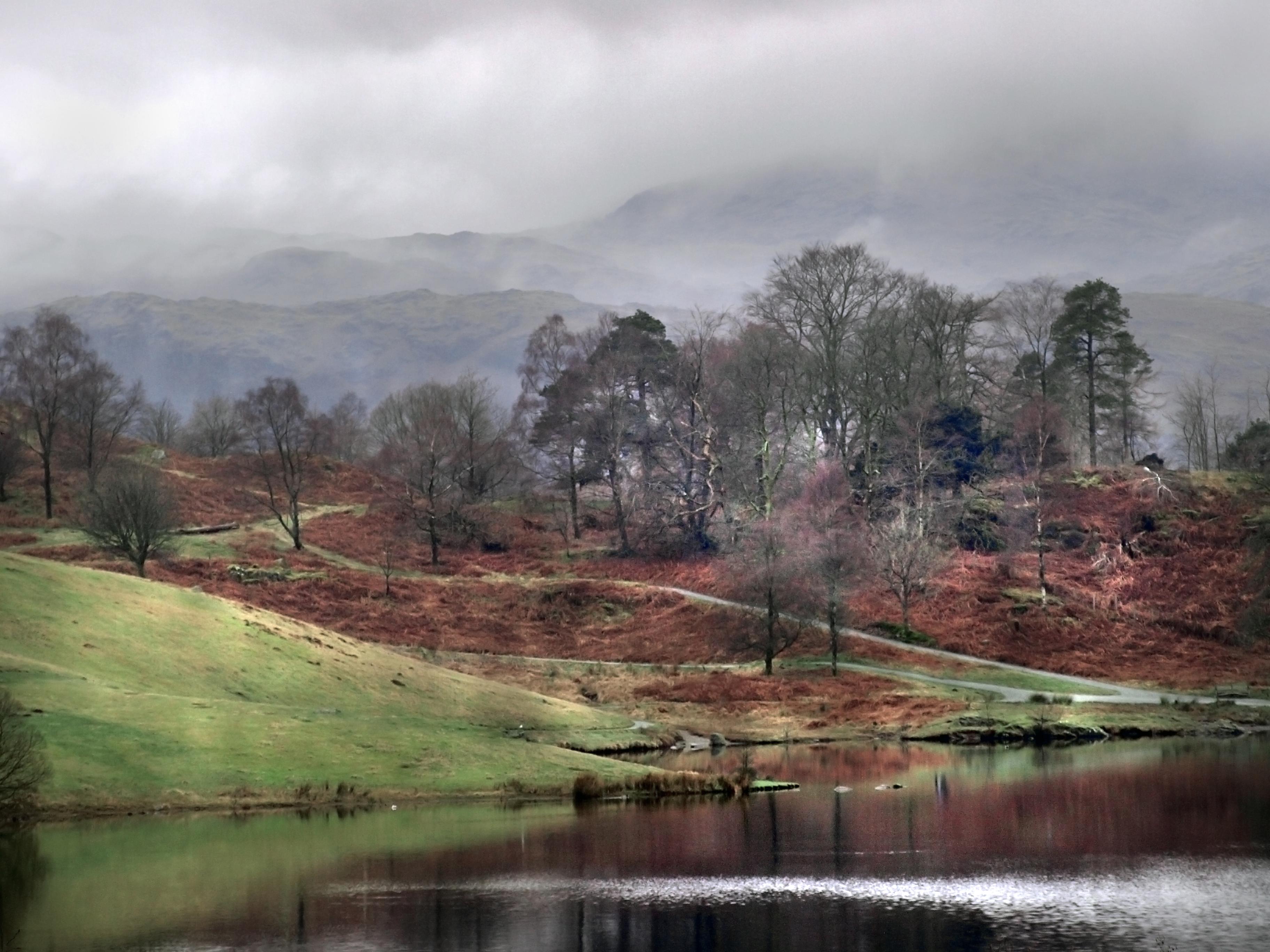 Tarn Hows, rain, Cumbria
