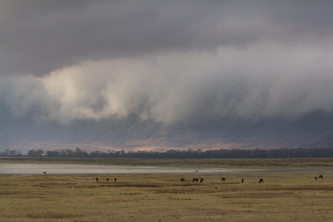 Caldera Clouds, Ngorongoro Crater NP