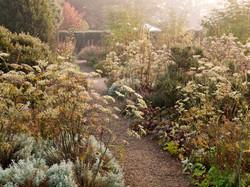 Autumn Herbs