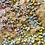 Thumbnail: Rainbow Blondie Traybake 🌈  Brand New!
