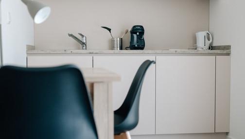 Küche Basic Apartment