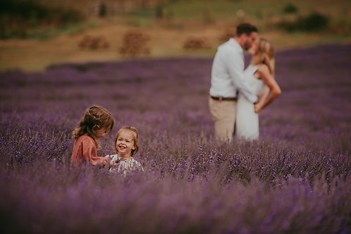 Lordington Lavender Open Day
