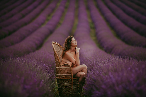 Liberty in the Lavender Shoot