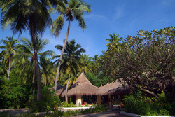 Biyadhoo - palm_restaurant