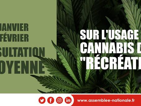 Lancement d'une consultation citoyenne sur l'usage du cannabis