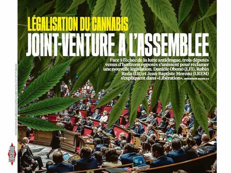 """Interview à Libération : """"L'objectif est de démontrer que le cannabis peut être réglementé"""""""
