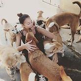 Getting loved up by rescue dogs at _anim