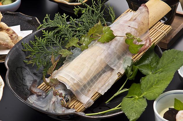 九州の出張撮影は、井下良治写真事務所にお任せ。料理撮影 イカ刺し