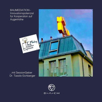 EIFM_Baumediation - Innovationspotential