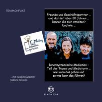EIFM_Teamkonflikt_Sabine Grüner.png