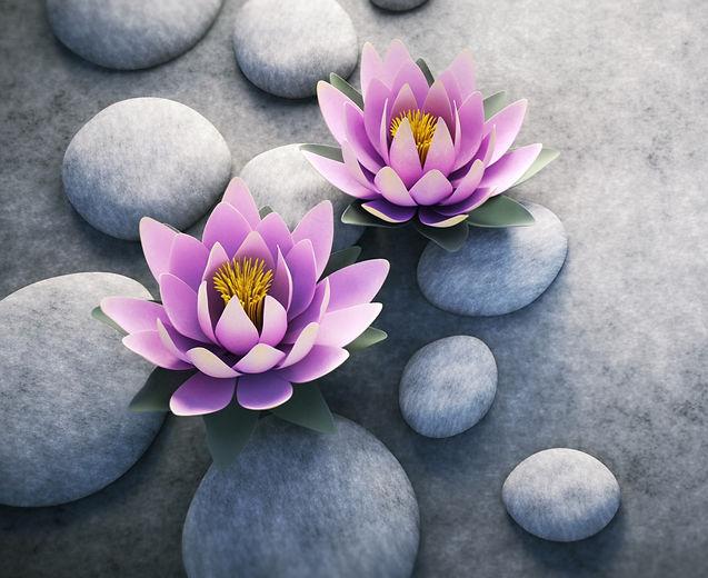 Lotus%204_edited_edited.jpg